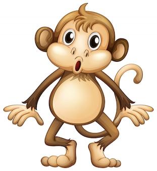 一人で立っているかわいい猿