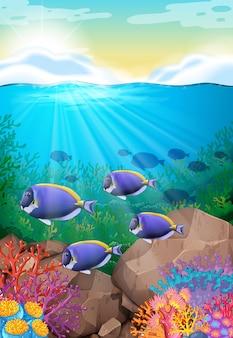 海の下を泳ぐ魚