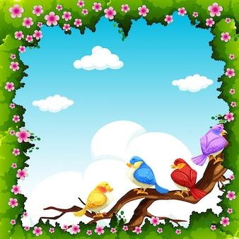 昼間の枝に鳥