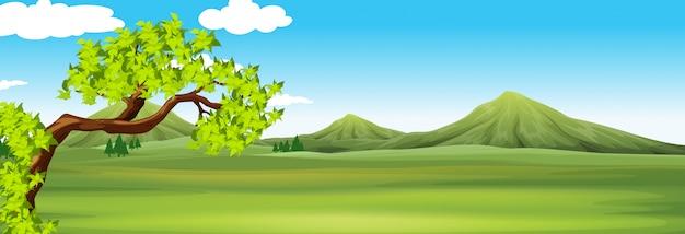 Природа сцена с зеленым полем
