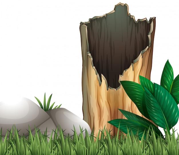 木の丸太と草原の岩