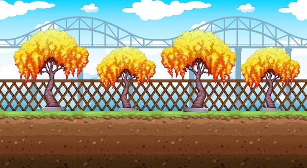 柳の木の庭
