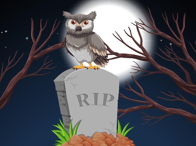 夜の墓石にフクロウ