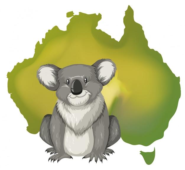 コアラとオーストラリアの地図