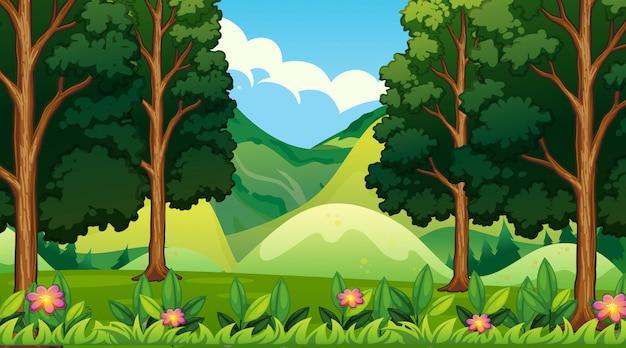 Пустой фон природа пейзаж