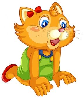 分離されたポーズのような人間のかわいい猫