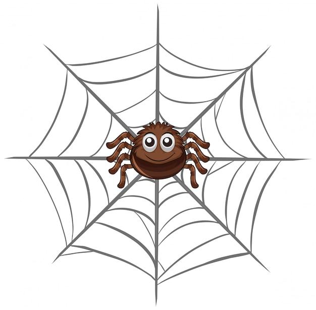 クモの巣のクモ