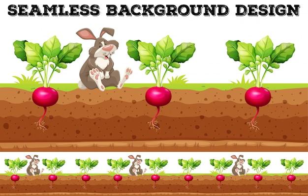 大根とウサギ