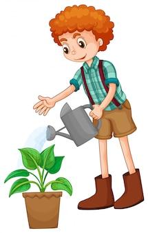 植物に水をまく少年