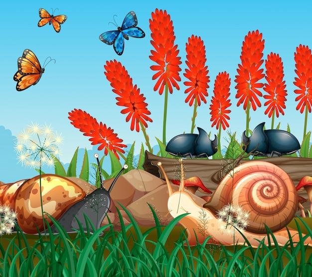 公園の昆虫と背景