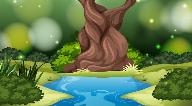 自然環境の風景