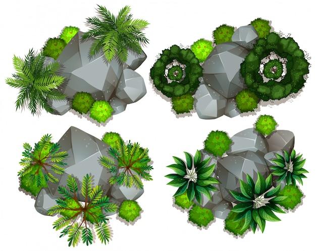 植物と岩の空撮
