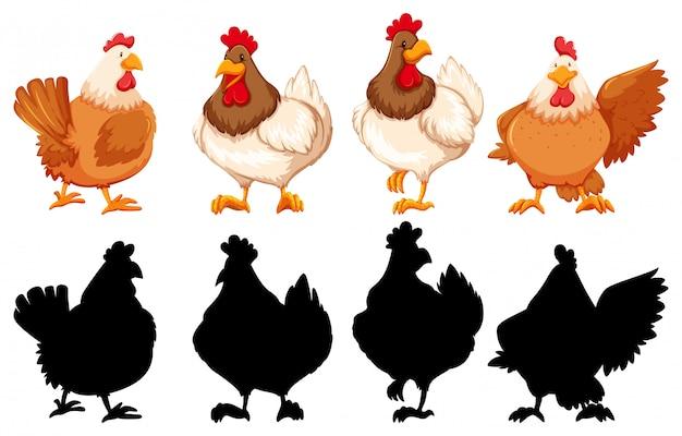 鶏のシルエット、色、輪郭バージョン