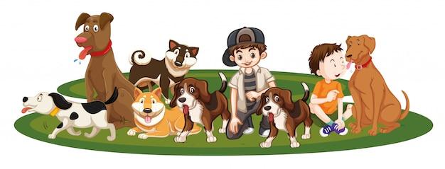 Дети с животными на изолированных