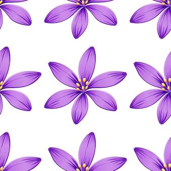白で隔離されるシームレスな紫色の花