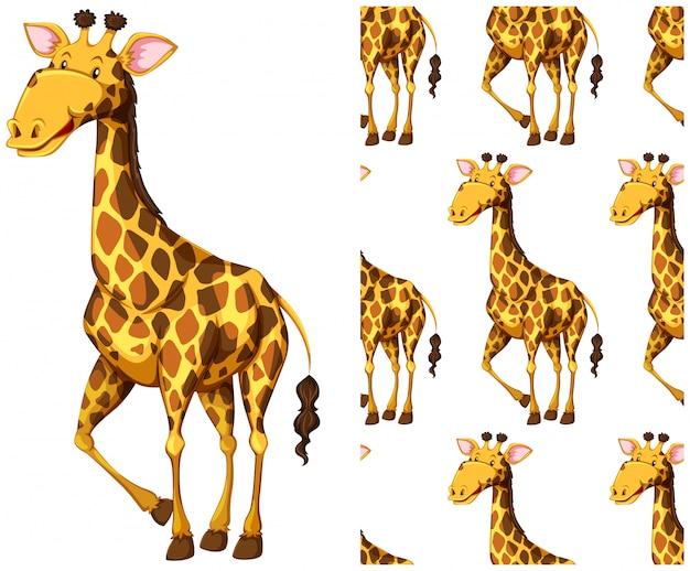 Бесшовный узор жирафа на белом