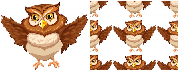 Бесшовные сова на белом