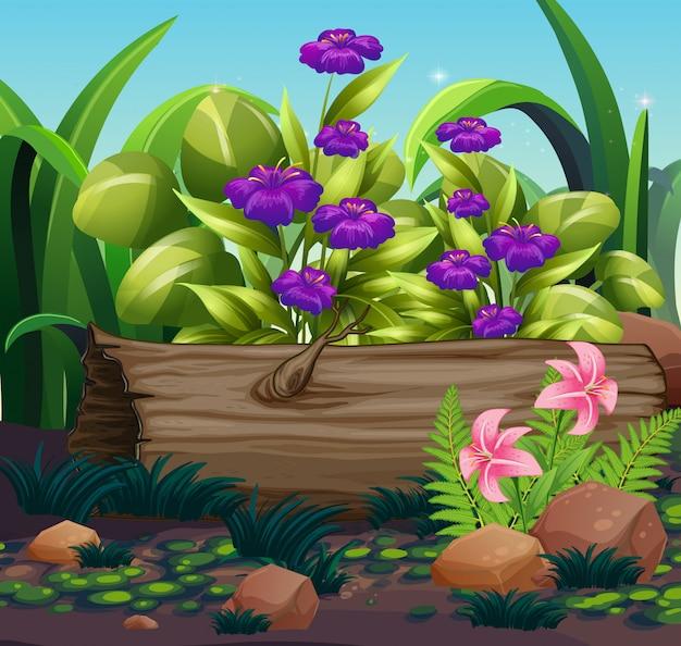 庭の紫色の花と自然シーン