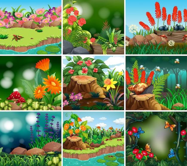 Набор фоновой сцены с темой природы