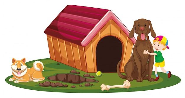 Мальчик и две собаки рядом с собачью будку