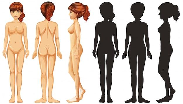 白い背景のシルエット女性