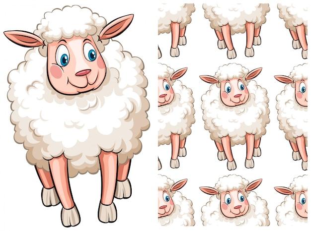 白で隔離されるシームレスな羊