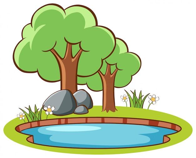 池のそばの木々のある風景
