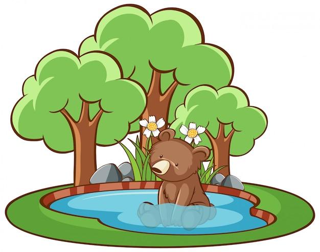 Изолированное изображение маленького медведя в пруду