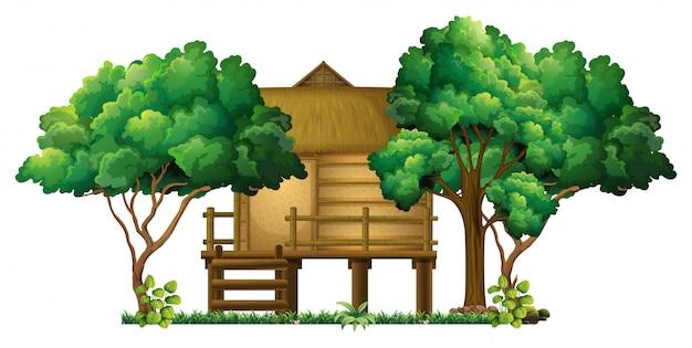 森の中の木造の小屋