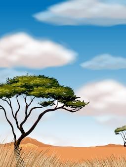 砂漠のフィールドに木のあるシーン