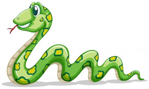 Зеленая змея ползет по белому