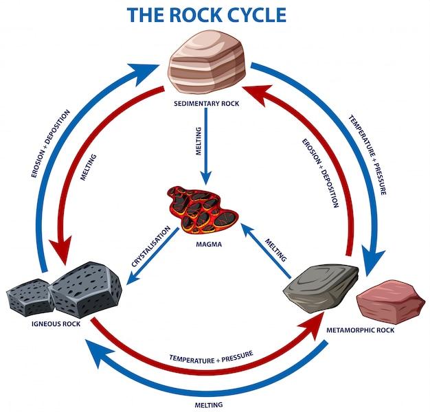 Диаграмма, показывающая цикл рок
