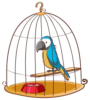 Милый попугай в клетке на белом