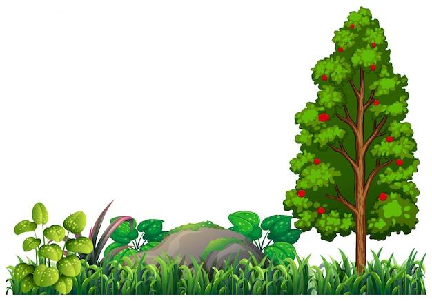 孤立した自然植物要素