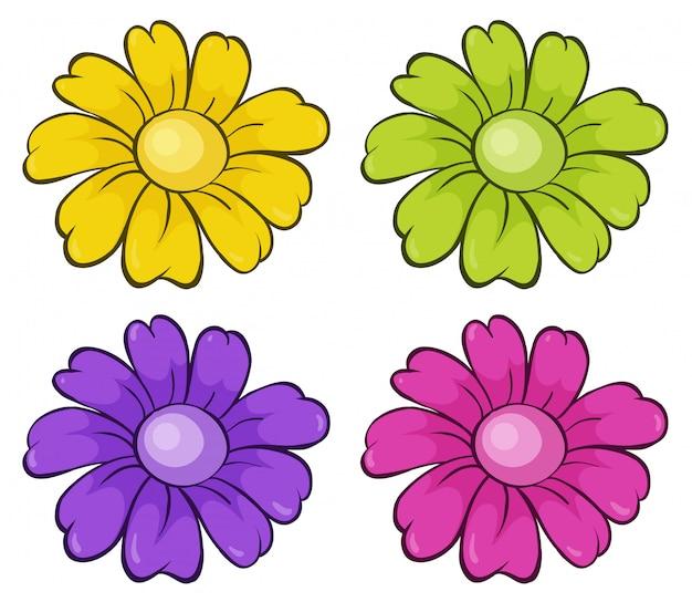 Изолированный набор цветов