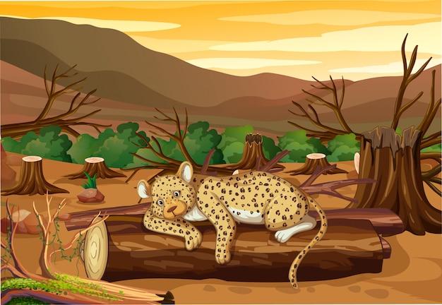 Сцена контроля загрязнения с тигром и вырубка леса