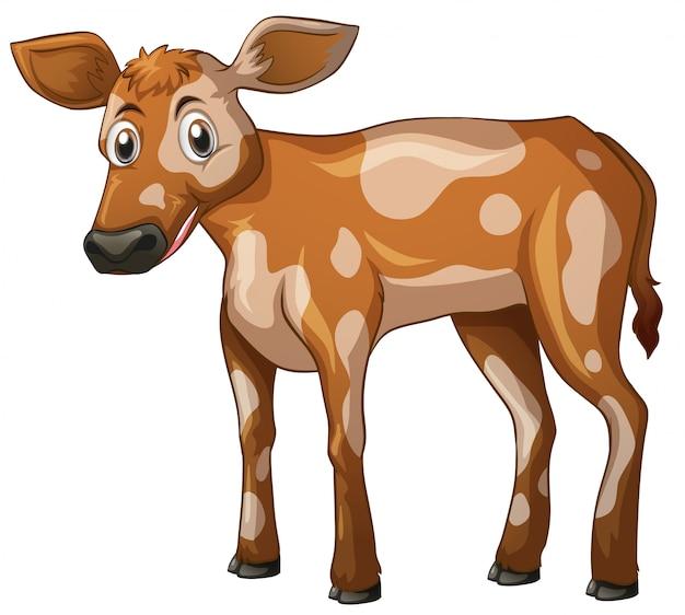 Корова стоя