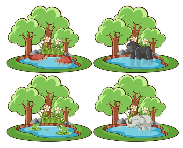 池と木と公園の野生動物のセット