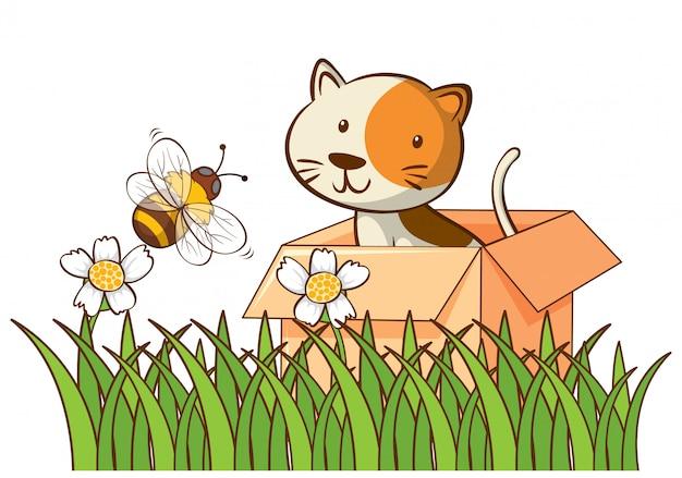 Изолированное изображение милого кота в коробке