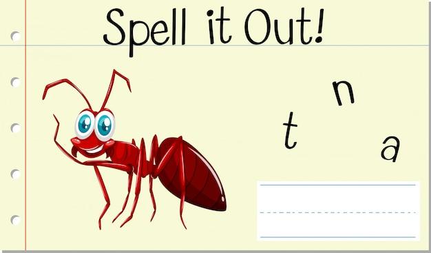 英語の単語のアリを綴る