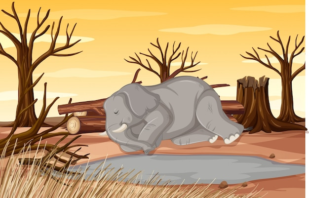 Сцена контроля загрязнения со слоном и засухой