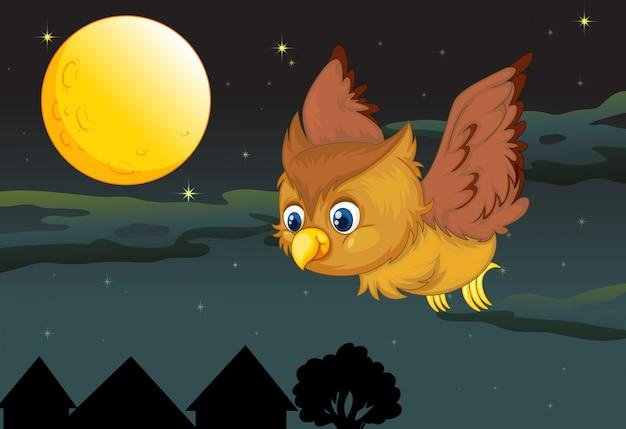 フクロウと満月