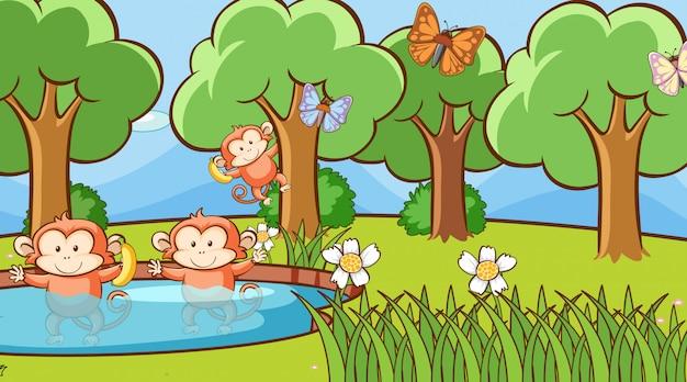 森の中の猿とのシーン