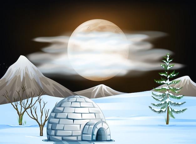 夜のイグルーと雪のシーン