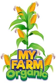 私の農場の新鮮なトウモロコシと有機という単語のフォントデザイン