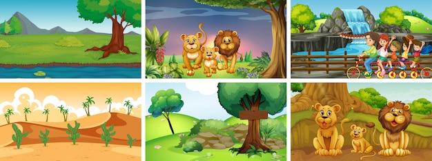 Сцены с животными и людьми в парке