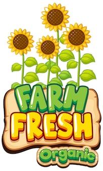 ひまわりと単語新鮮な農場のフォントデザイン