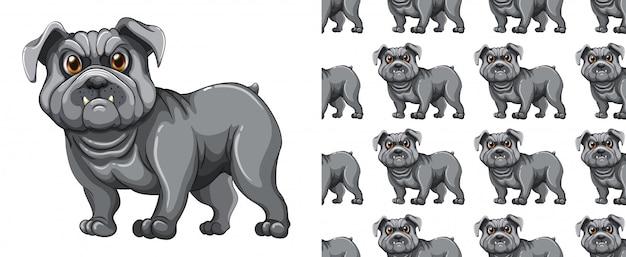 Мультфильм животных