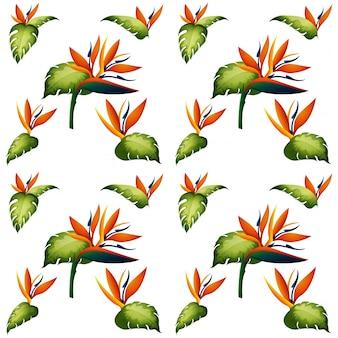 鳥の楽園の花とシームレスな背景のデザイン