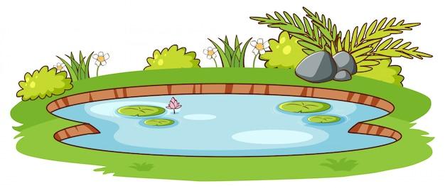 白い背景の上の緑の草と小さな池